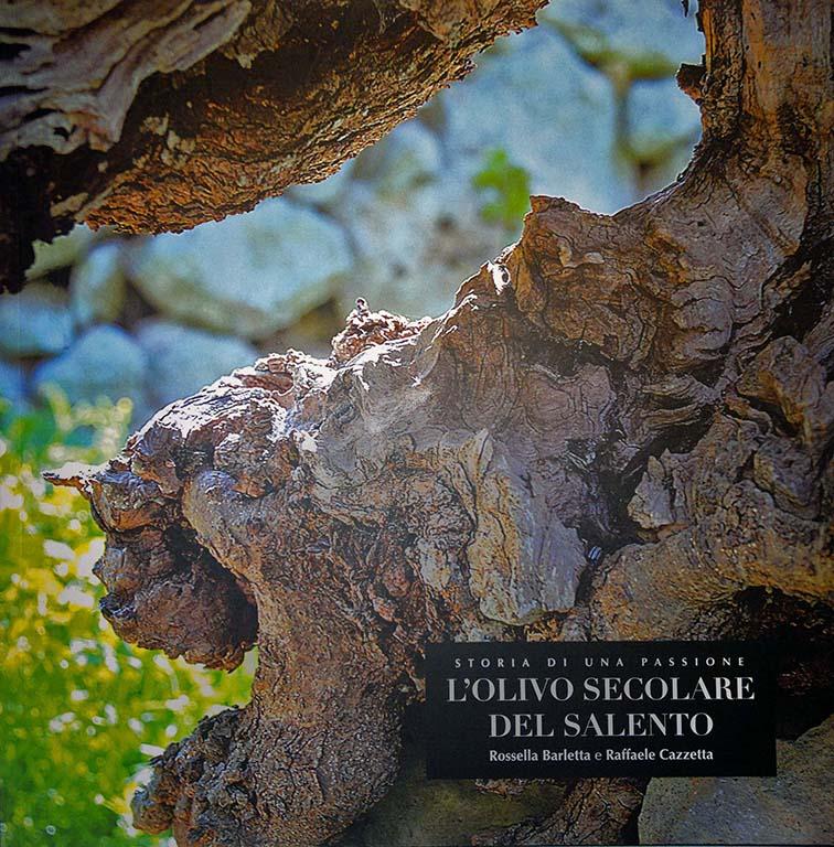 L'olivo secolare del salento
